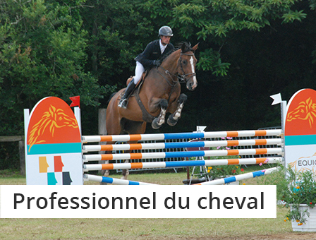 Cavalier-cheval-equitation-professionnel